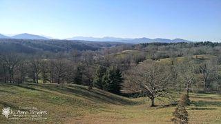 Biltmore scenery