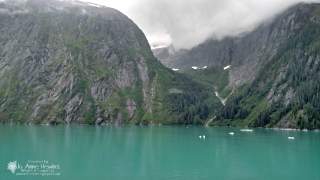 Inside Passage to Sawyer Glacier