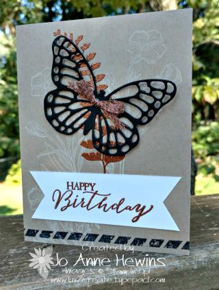 Butterfly Basics catalog CASE