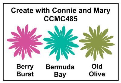CCMC485