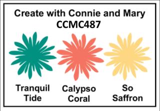 CCMC487