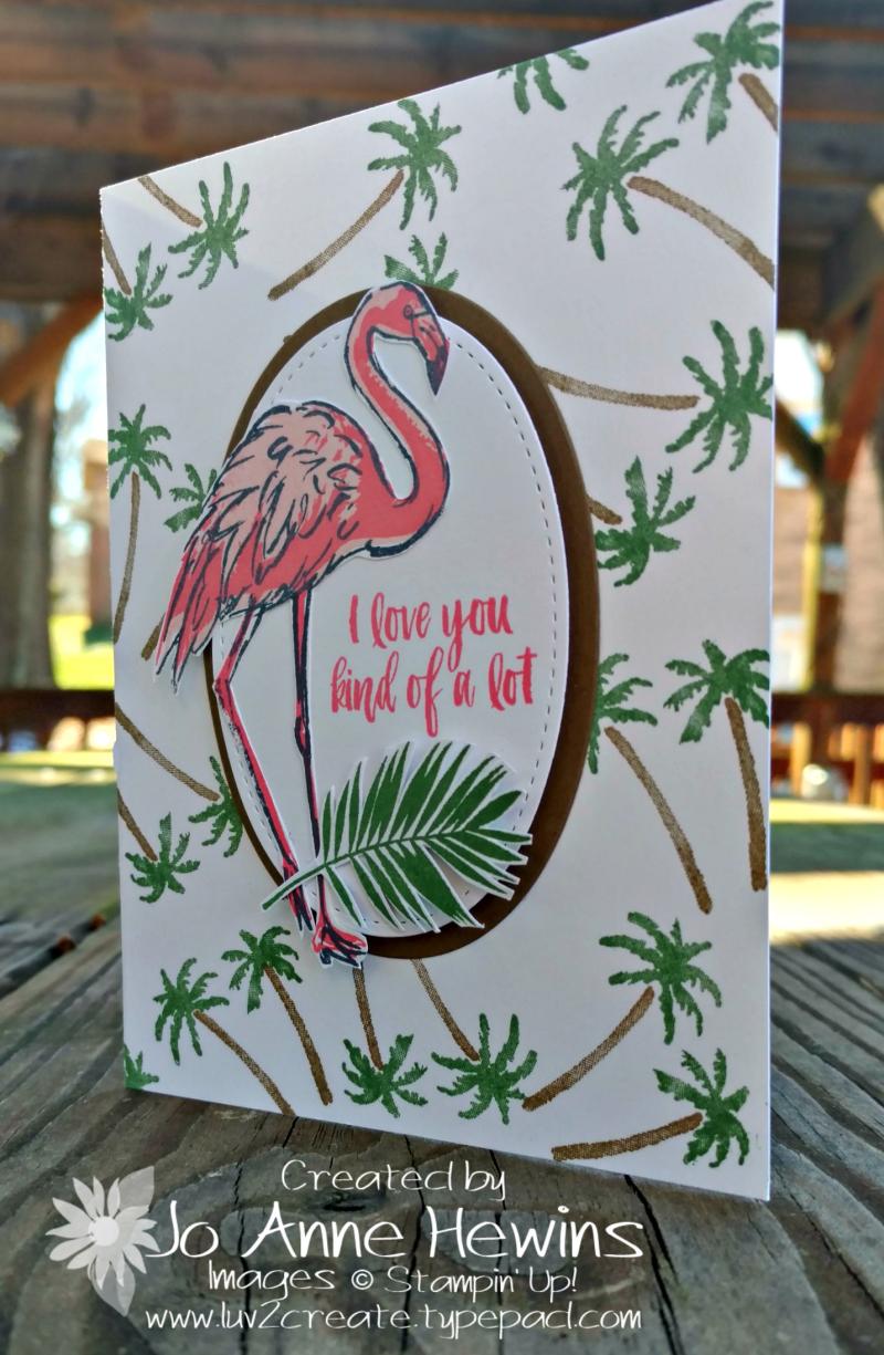 Fabulous Flamingoand Waterfront