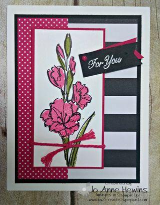 May NC blog gift card