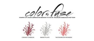 Color Fusers August Jason