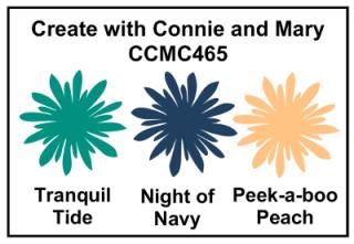 CCMC#465