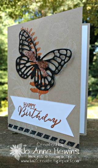 Butterfly Basic CASE