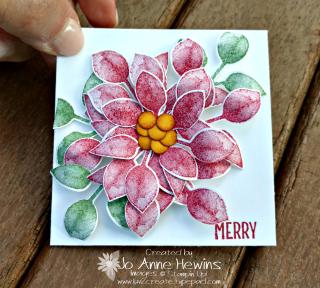 Poinsettia Frame card