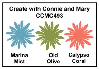 CCMC493