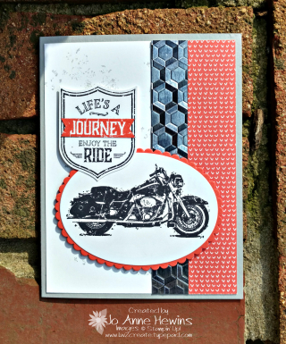 One Wild Ride by Jo Anne Hewins