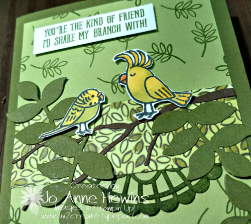 Bird Banter card by Jo Anne Hewins close up