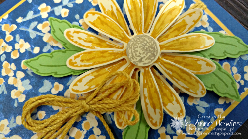 Garden Impressions and Daisy Delight close up of flower by Jo Anne Hewins