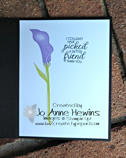 Lasting Lily card coordinates with frame inside of card by Jo Anne Hewins