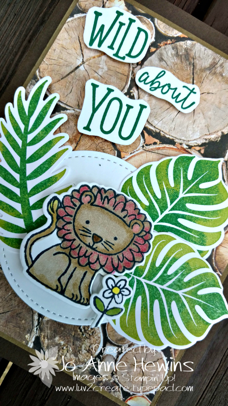 A Little Wild and the Tropical Chic sets close up by Jo Anne Hewins