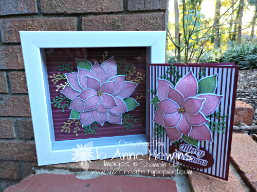 NC Demo Poinsettia Duo by Jo Anne Hewins
