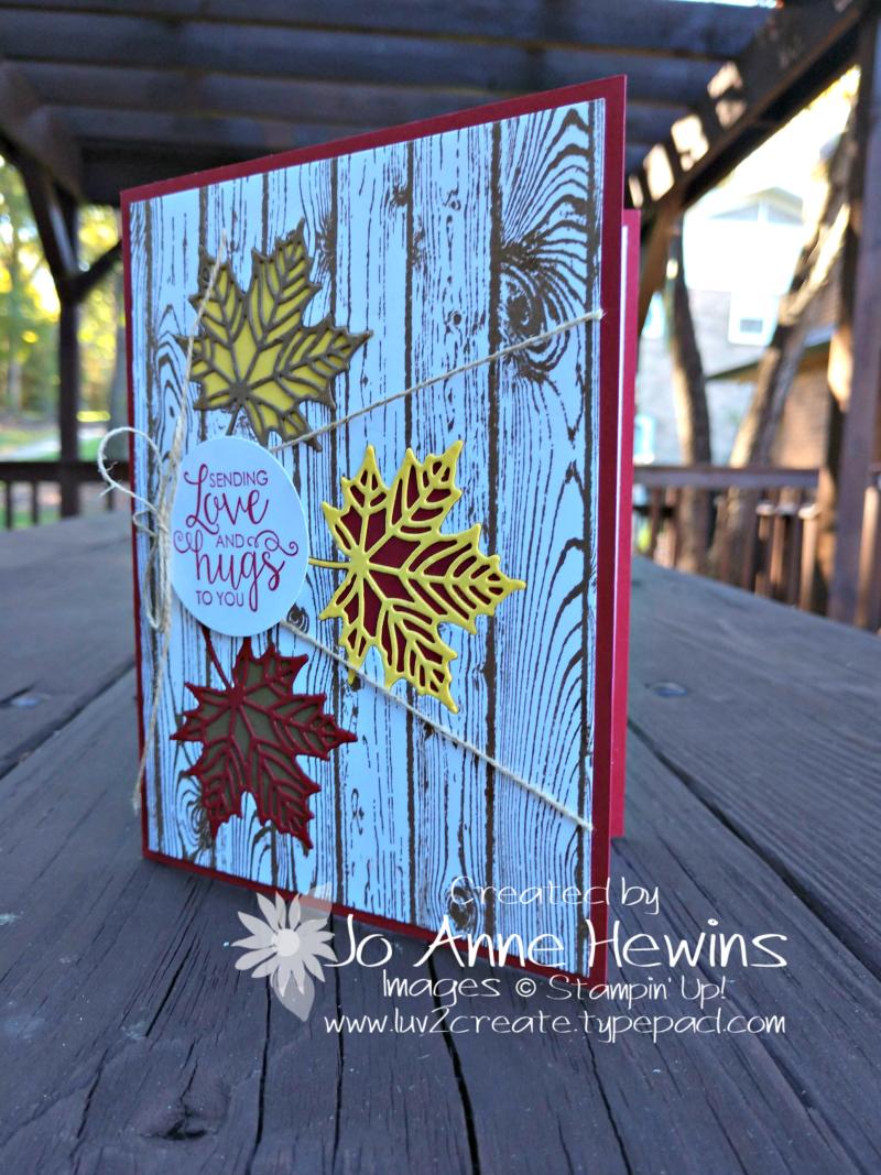 Colorful Seasons plus Hardwoods by Jo Anne Hewins