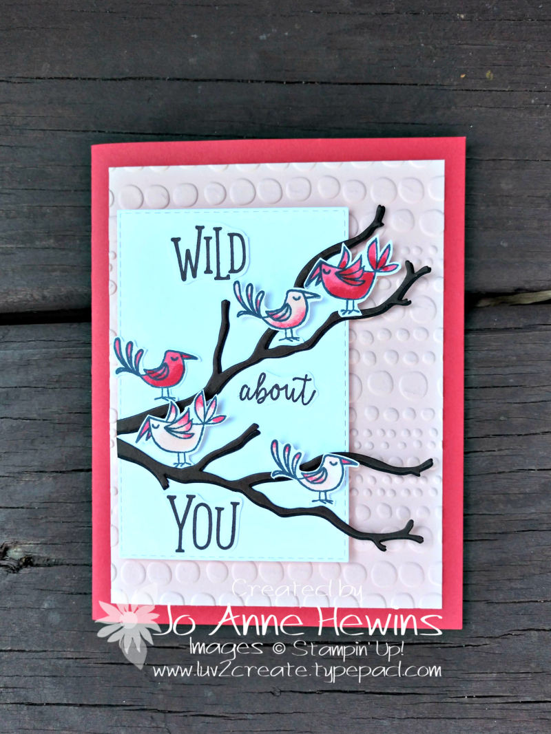 Color Fusers for February 2019 Be Mine Valentine Paper Pumpkin by Jo Anne Hewins