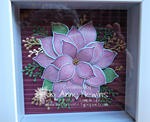 NC Demo Poinsettia Frame by Jo Anne Hewins