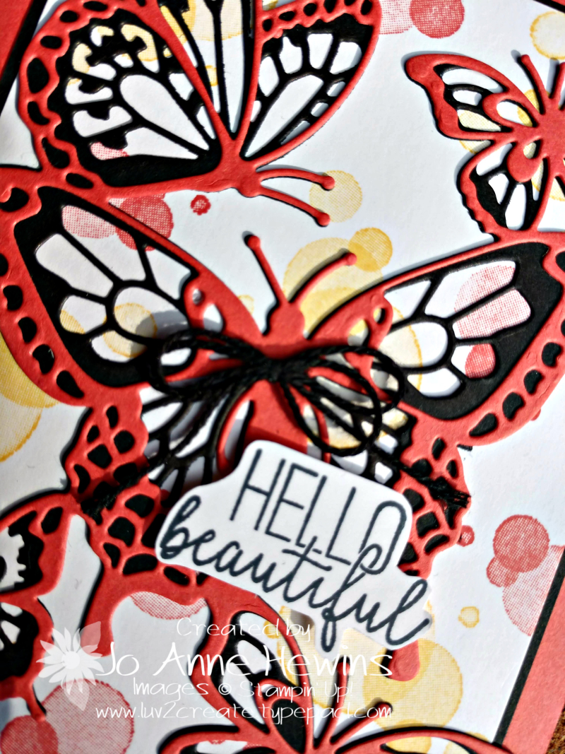 Beauty ABounds Bundle close up by Jo Anne Hewins