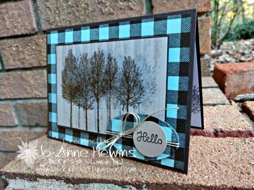 Winter Woods Vellum card by Jo Anne Hewins