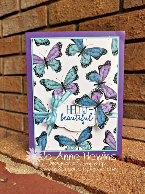 CCMC #541 Butterfuly Gala by Jo Anne Hewins