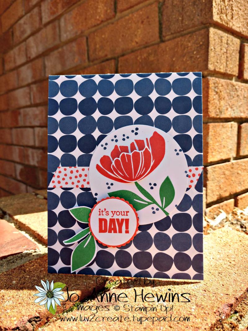 CCMC #558 Bloom by Bloom by Jo Anne Hewins