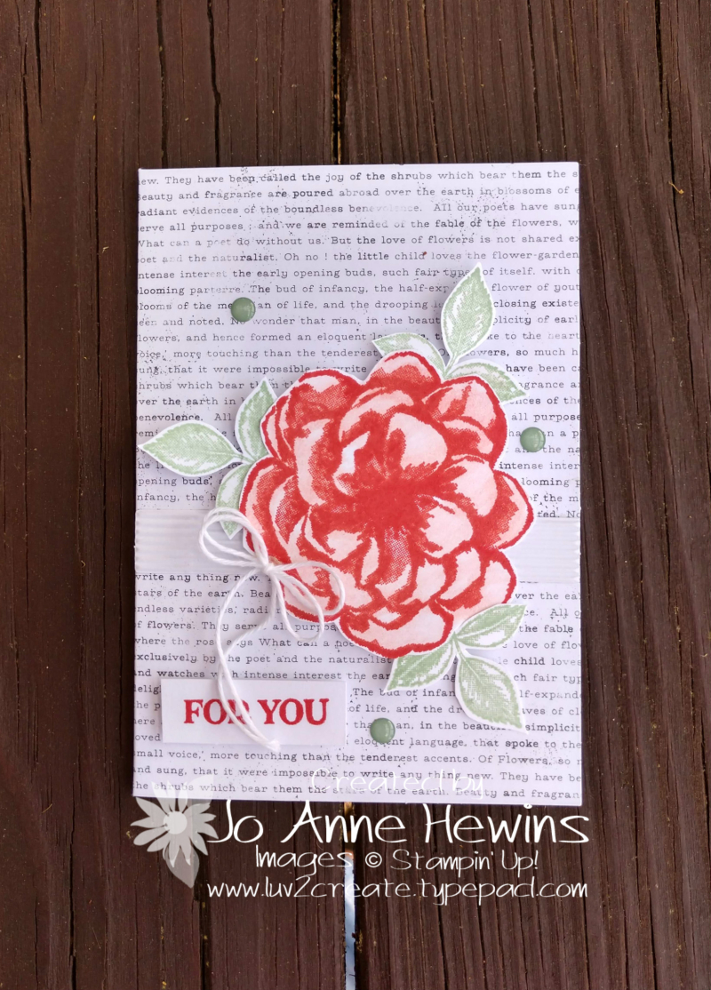 April Paper Pumpkin Calypso Coral and Wink of Stella flower by Jo Anne Hewins