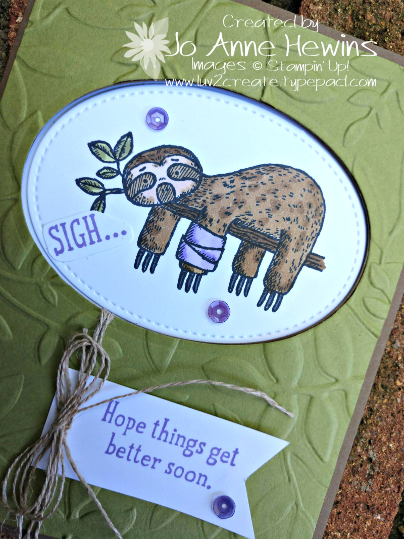 Back on Your Feet Sloth Close Up by Jo Anne Hewins