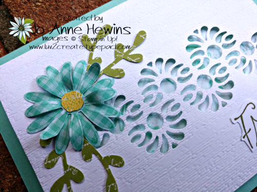 Tasteful Backgrounds with the Medium Daisy Punch Close Up by Jo Anne Hewins
