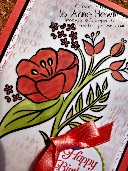 All That You Are Vellum Close Up by Jo Anne Hewins