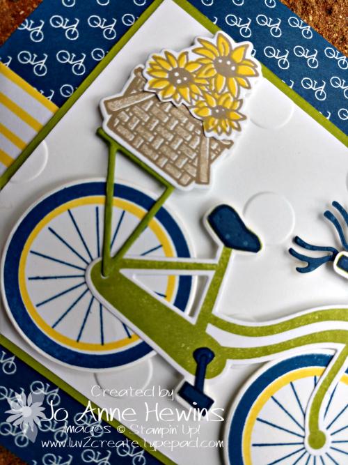 CCMC #557 Bike Ride Left Close Up by Jo Anne Hewins