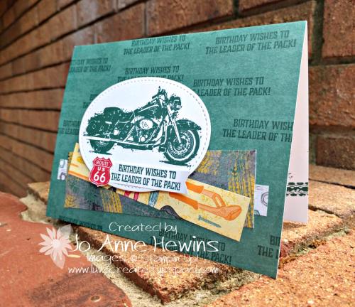 CCMC#560 One Wild Ride by Jo Anne Hewins