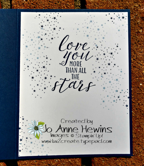 Wild About You Birthday Inside by Jo Anne Hewins