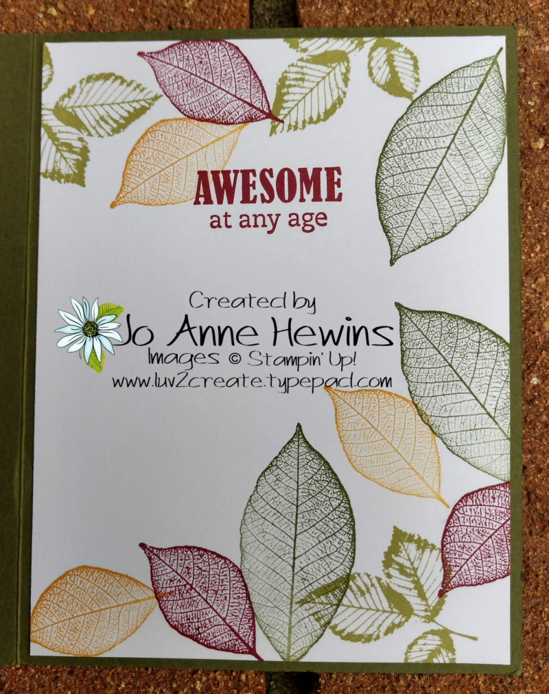 Rooted in Nature Inside by Jo Anne Hewins