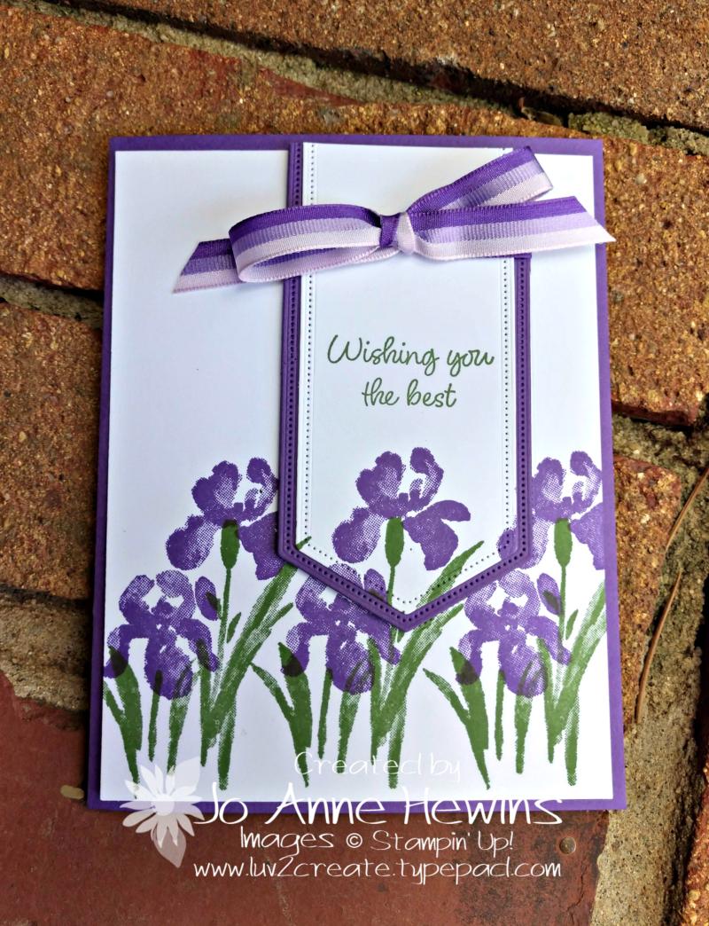Inspiring Iris in Gorgeous Grape by Jo Anne Hewins