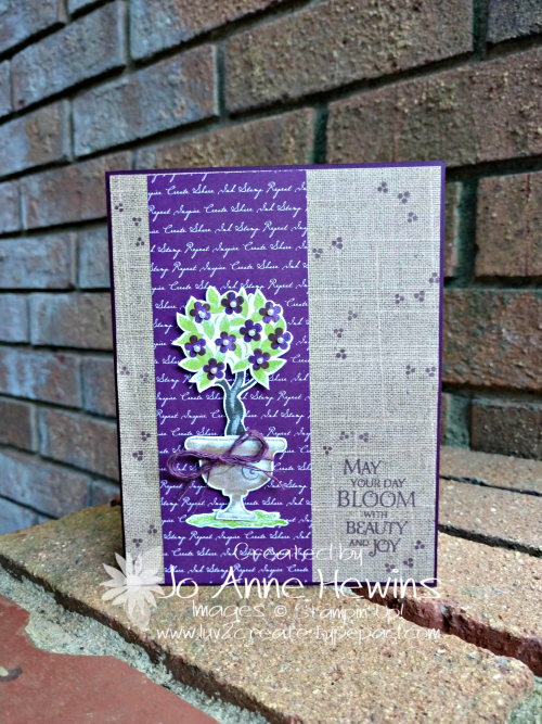 Beauty & Joy in Blackberry Bliss Card by Jo Anne Hewins