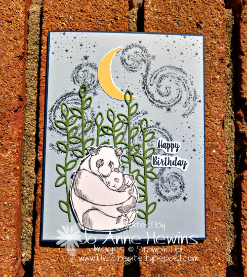 Wild About You Birthday Card by Jo Anne Hewins