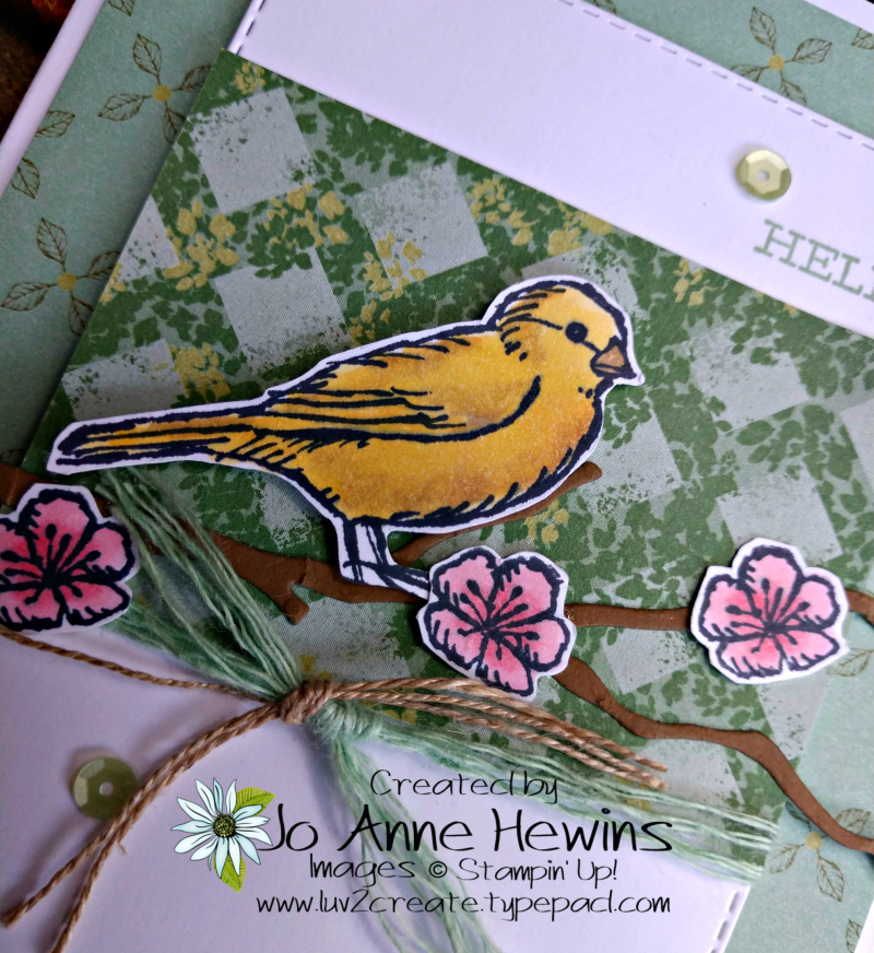 Free Bird Close Up by Jo Anne Hewins