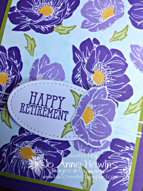 Floral Essence Retirement Close Up by Jo Anne Hewins