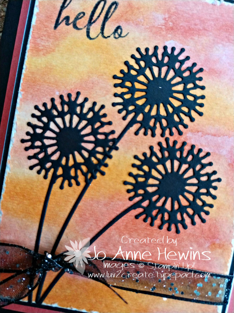 CCMC #585 Serene Silhouettes Close Up by Jo Anne Hewins
