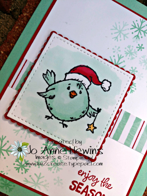 Birds of a Feather for Christmas Close Up by Jo Anne Hewins