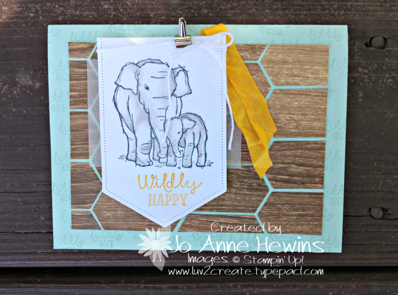 NC Demo Blog Hop July Case of Wildly Happy Card by Jo Anne Hewins