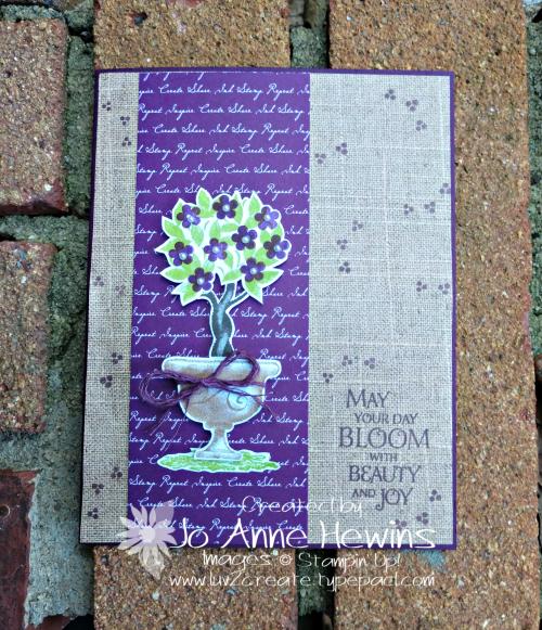 Beauty & Joy in Blackberry Bliss by Jo Anne Hewins