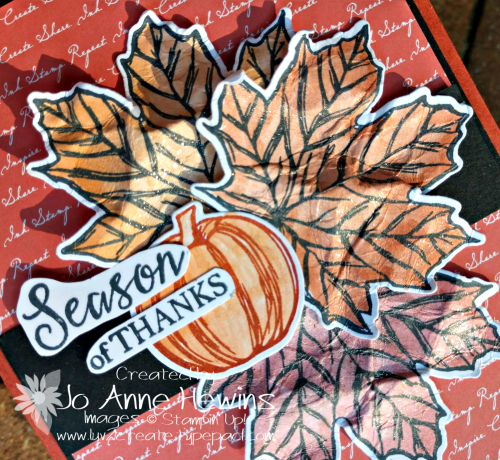 Color Fusers Gather Together October Wink of Stella by Jo Anne Hewins