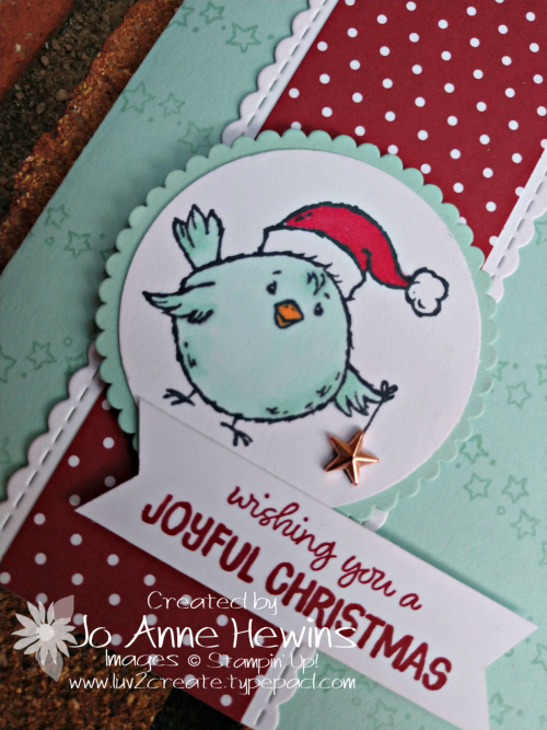 Birds of a Feather Christmas Close UP by Jo Anne Hewins