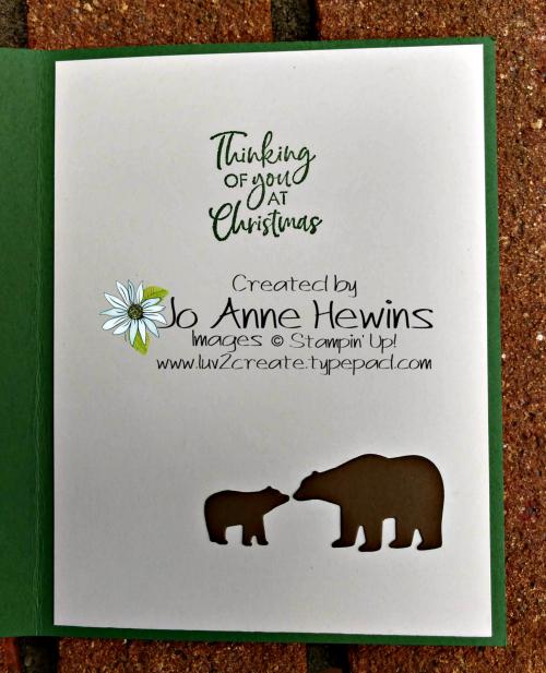 Snow Globe Scenes Bear Inside by Jo Anne Hewins
