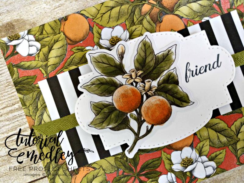 Botanical Prints Product Medley Tutorial Medley Close Up
