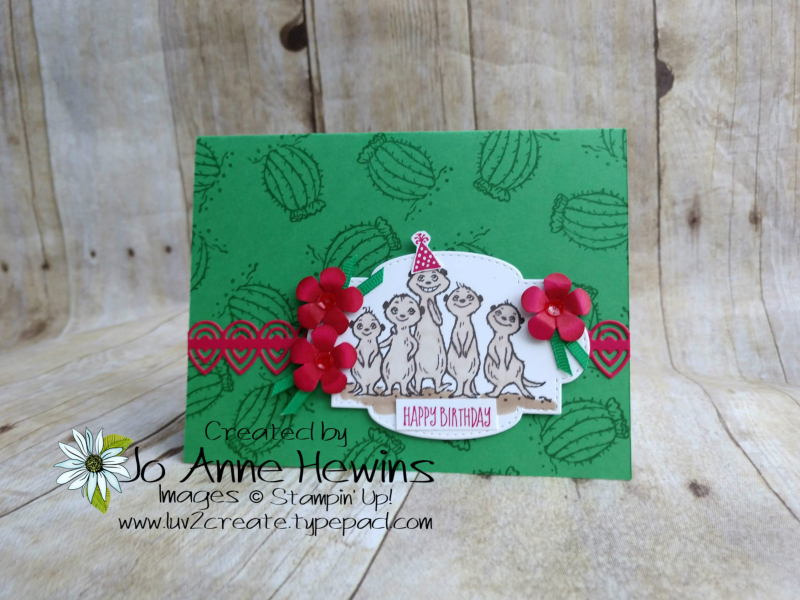 Meercat card by Jo Anne Hewins