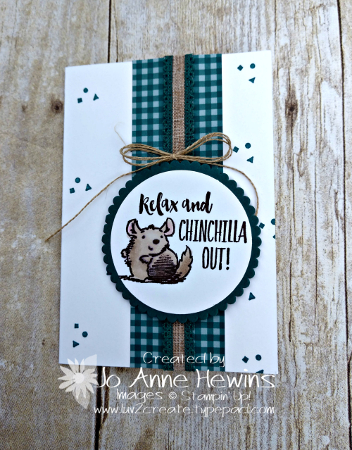 Witty-cisms Chinchilla by Jo Anne Hewins