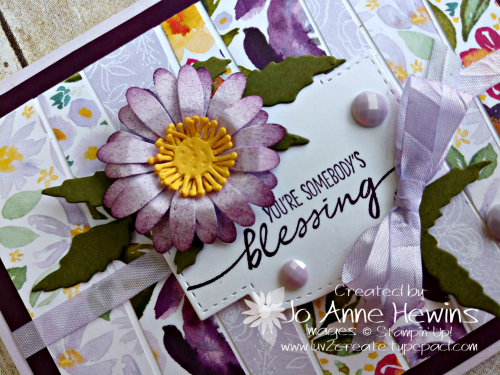 NC Blog Hop Spring Close Up by Jo Anne Hewins