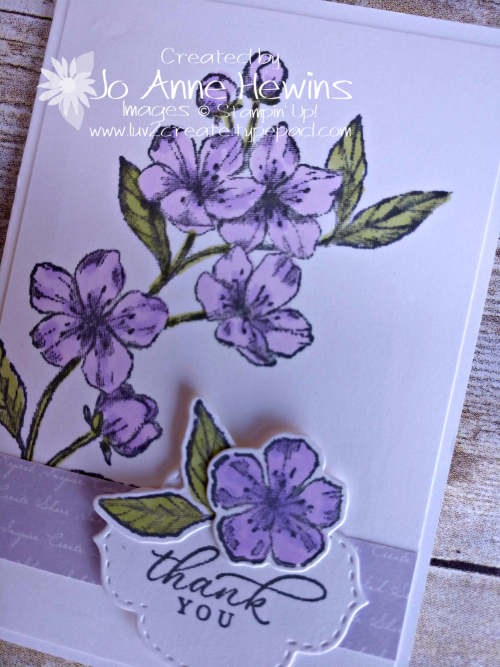 Forever Blossoms Purple Posy close up by Jo Anne Hewins